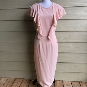 NWT ASOS Tall Pink Zip Back Sheath Dress Size 12